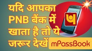 PNB Net banking issue